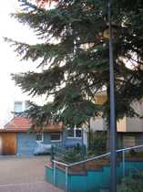 3 Zi Neubau-