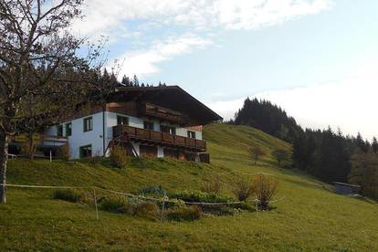 Halbes neu renoviertes Haus in schöner Lage (wie Alleinlage) auf ca. 1.050m Höhe als Freizeitwohnsitze/Zweitwohnsitz- Nähe Fieberbrunn