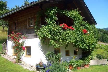 Schönes Wochenendhaus mit 2 Schlafzimmer als Freizeitwohnsitze/Zweitwohnsitz im Hüttenstil in ruhiger Lage - Alpbachtal