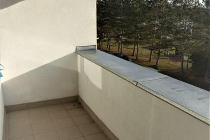 Sonnige 3-Zimmer-Wohnung mit Balkon, Nähe Schlosspark
