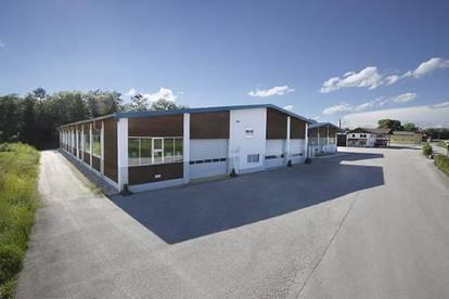 Gewerbe-/Industriehallen mit umfangreicher Ausstattung