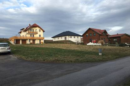Sonniger leichter Südhang - Zwerbach/Ruprechtshofen - Nähe Wieselburg
