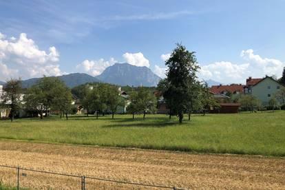 4 Zimmer Obergeschoßwohnung in Pinsdorf