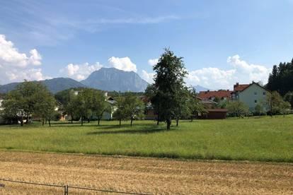 Gemütliche 3 Zimmer Wohnung in Pinsdorf - rascher Baufortschritt