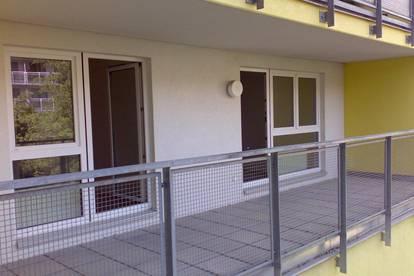 Privat. Krottenbachstraße 82,  2-Zimmerwohnung mit großem Balkon, Ruhelage, unbefristete Hauptmiete