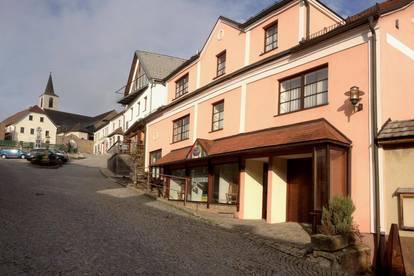 Sonnige 90m² Wohnung im Zentrum von Bad Traunstein (provisionsfrei)