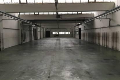 Röthis - IZ 6 - Hallenfläche