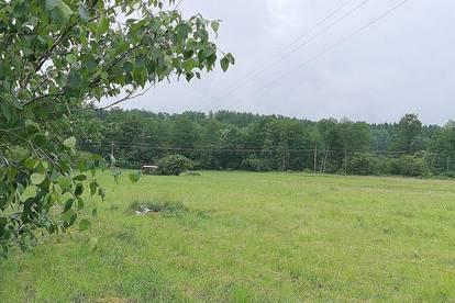 Schöne, sonnig gelegene Freilandflächen - Eine Bauerwartung ist nicht ausgeschlossen!