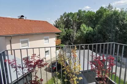 Neubau Garconniere mit sonnigem Balkon