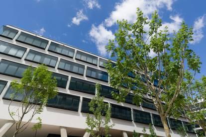 Modern Workplace: neuer Office Campus mit vielen Annehmloichkeiten fürs Arbeitsleben