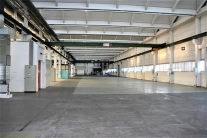 DIREKT VOM EIGENTÜMER! Lager- und Produktionshalle Leonding/ Linz