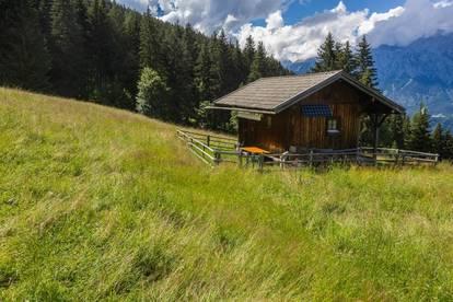kleine Hütte in Traumlage zu vermieten
