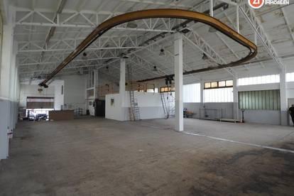 Halle mit ca. 500m² + Rolltor - ideales Lager oder sanftes Gewerbe - Mischbaugebiet