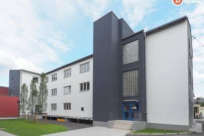 Großzügige Lagerflächen / ARCHIV - beheizbar - Linz-Süd