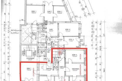 WG Zimmer in renovierter Wohnung im Stadtzentrum zu vermieten