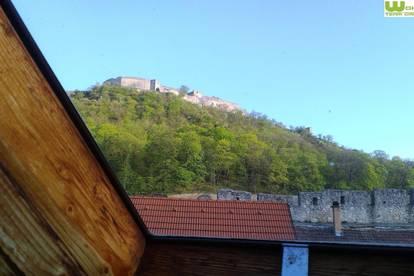 altes Familienhaus idyllische Lage - ausbaubar Schlossbergnähe!