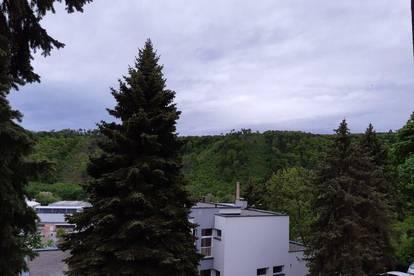 Helle 105m² Terrassenwohnung mit Garten  in Berndorf