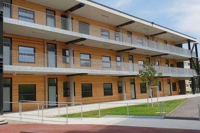 Eigentumswohnungen Neubau 64m2 mit Garten + Loggia