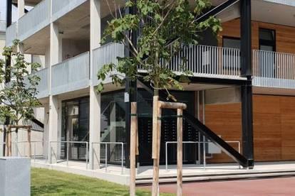 Schöne helle Mietwohnungen - Neubau
