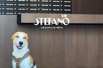 STEFANO ... Stil kannst du mieten