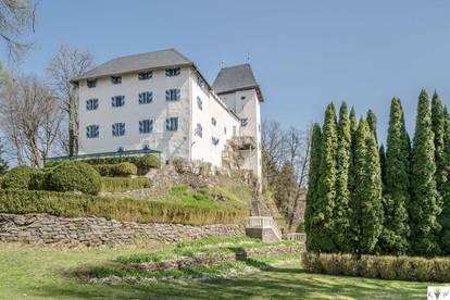 Märchenhaftes Schloss mit viel Luxus!