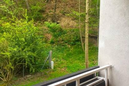 PROVISIONSFREI!!! Schöne ruhige Wohnung in Edlitz zu verkaufen!!!
