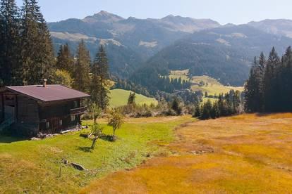 Freizeitwohnsitz: Grundstück mit alten Bauernhaus