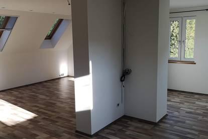 """wunderschöne Wohnungen + GARTENANTEIL ;  offenes """"Loft"""" ca. 110m²"""