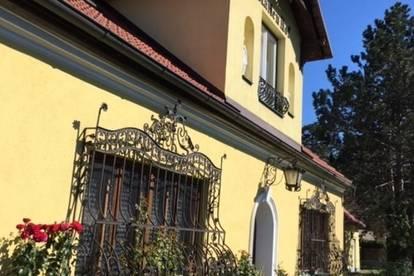 NEUER PREIS!! Einzigartiges Herrenhaus in St.Veit mit über 3000m² Grund!!
