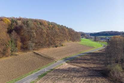 Ackerland und Wald nähe Gnas zu verkaufen!