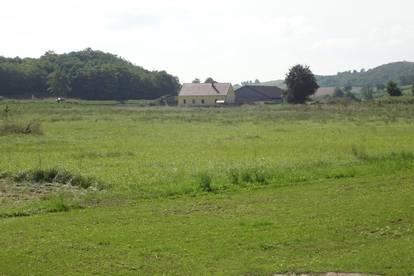 Baugrundstück nahe dem Naturpark Leiser Berge - Zwentendorf