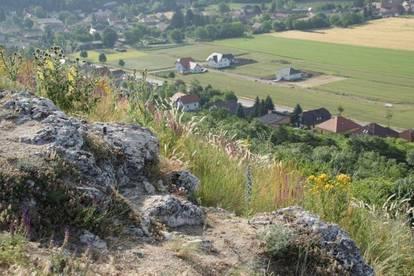 Baugrund Siedlung Enzersdorf NEU - Herrschaftsbreiten - 926m²