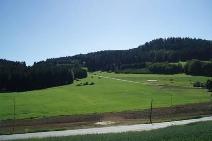 Baugrund mit anschließendem Grünland in Mitterschlag