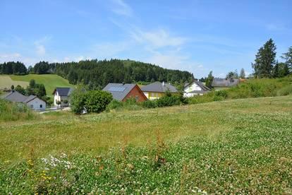 Siedlung in Etzen - Baugrund Parzellen Nr. 1100/2