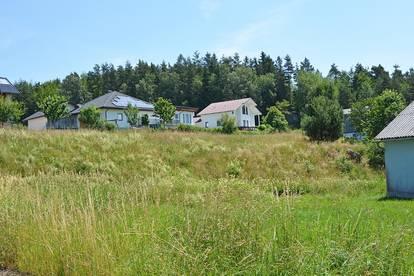 Siedlung in Etzen - Baugrund Parzellen Nr. 1075/3