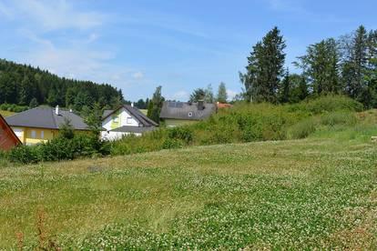Siedlung in Etzen - Baugrund Parzellen Nr. 1131/4