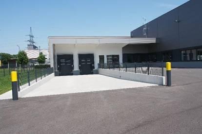 Modernes Betriebsobjekt im Gewerbepark
