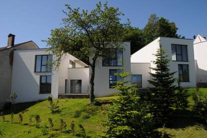 Moderne Wohnung mit Stadtblick - Zwettl