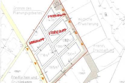 Grundstücke in Riegersdorf mit Möglichkeit eines Bauauftrages von Endlichdaheim