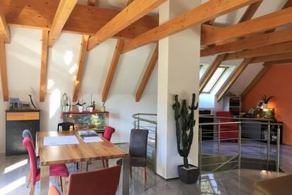 Großzügiges Landhaus mit Potential / derzeit 2 Wohneinheiten auf 3 erweiterbar / +6.320 m² Wiese & Wald