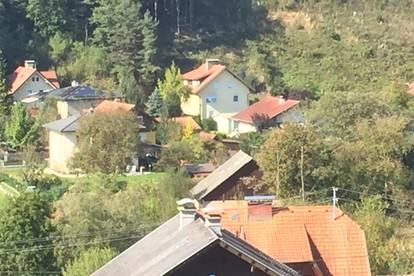 Feistritz / Drau -  2 Zimmer Wohnung mit Terrasse, Einbauküche und PKW-Stellplatz