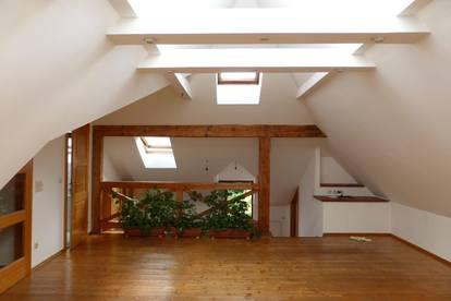 Atelierwohnung mit Dachverglasung, Miete beinhaltet BK + HEIZKOSTEN + TV/Internet !