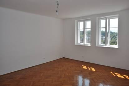 Attraktive 103m² Wohnung im Steyerdorf