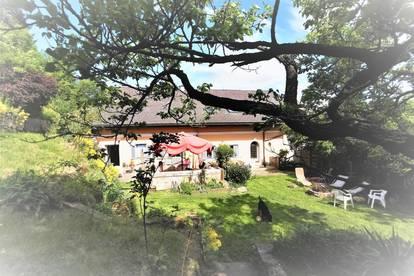 Herrenhaus, ideal für das großzügige Wohngefühl.      Zentrale Best-Lage    am Schlossberg - Wildon