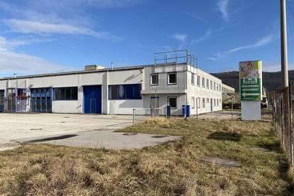 Lager und Bürofläche mit asphaltierter Freifläche ca. 1650m² im Betriebsbaugebiet Linzer Hafen