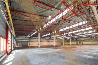 ZUKUNFTSPARK+   Produktions-/Lagerhallen inkl. Büroflächen zu vermieten - Erweiterungsmöglichkeit gegeben!