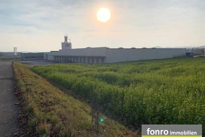 große Lagerhalle in Persenbeug-Gottsdorf zu Mieten, auch teilbar
