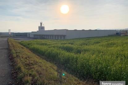 Kleinere Teilflächen einer ca. 9470 m² Lagerhalle in 3680 Persenbeug-Gottsdorf zu vermieten