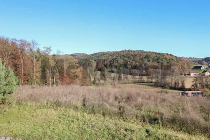 Traumhaft idyllisch: Weitläufiges Bauerwartungsland in Sinabelkirchen - bebaubar mit 8 EFH/ZFH