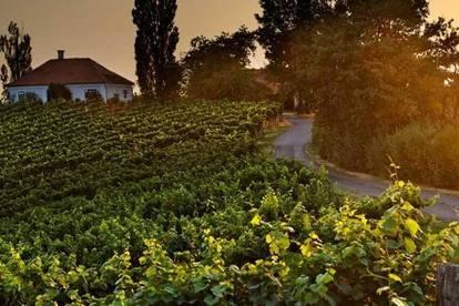 ++ Traum-Grundstück Nähe Therme Loipersdorf und Golfplatz ++ Süd-Ausrichtung ++ Panoramablick ++